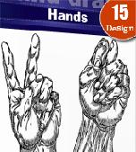 Hands-vectors